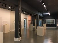 Students began setting up on the exhibit the last week of January for the annual jewelry and metals exhibition at Winthrop's Lewandowski Student Gallery (photo: Yashuri Del Rosario Rodriguez).